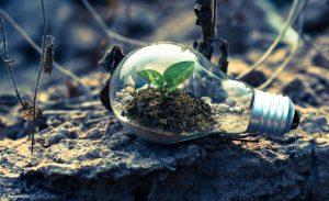 Екологічний менеджмент
